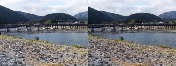 嵐山①(交差法)