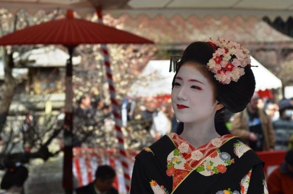 梅花祭 芸舞妓による野点