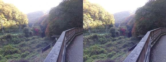 ほしだ園地コース②(平行法)