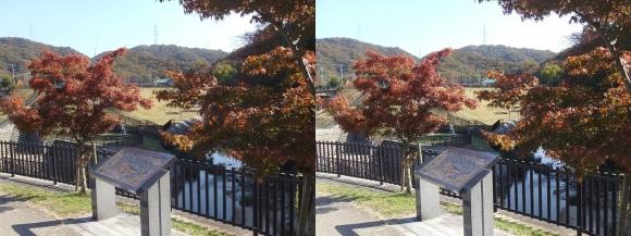 天野川 水辺プラザ(平行法)
