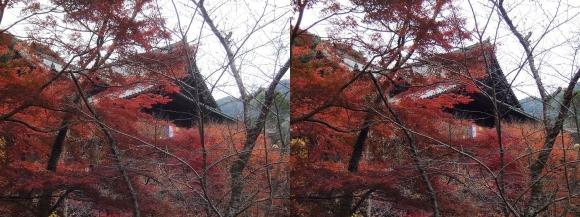 総本山 長谷寺 本堂⑥(平行法)