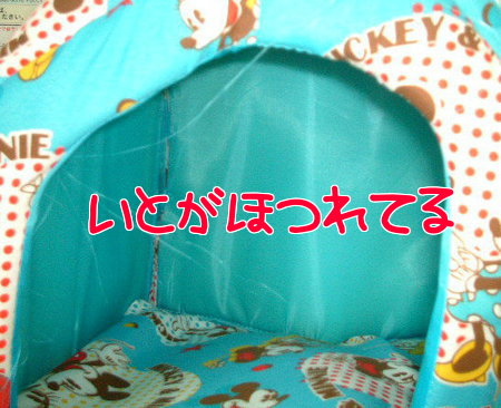 2013_01180078.jpg
