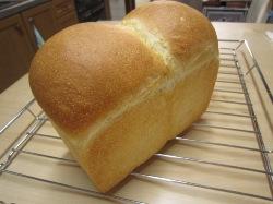 食パン 2013-1-25
