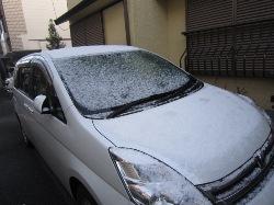 2013-2-8雪