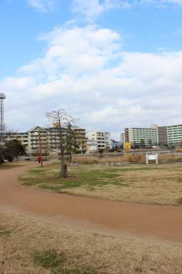 2013011910