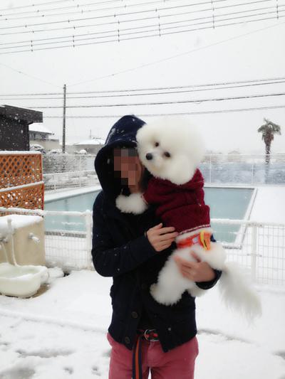 写真 2013-01-14 15 04 25