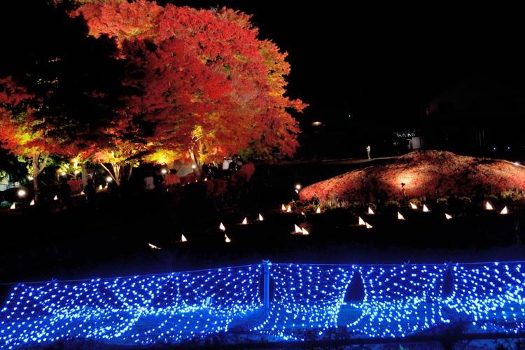 河口湖ライトアップ7
