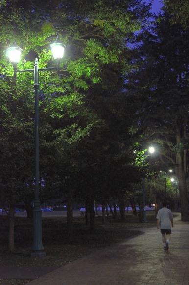 DSC-05364.jpg