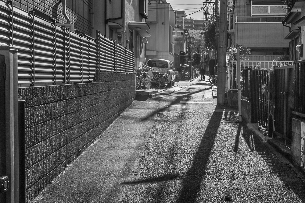 110102神楽坂-6100