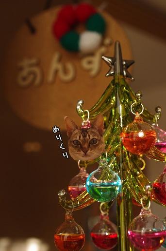 141224-04あんずツリー2#