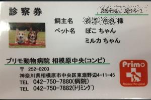 20120613-016.jpg