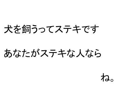 20120627-02.jpg