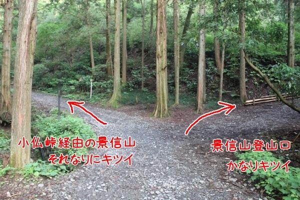 20120703-02.jpg