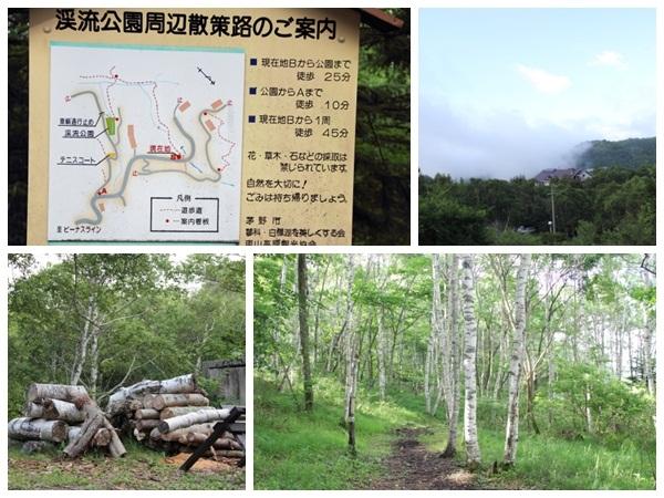 20120724-08.jpg