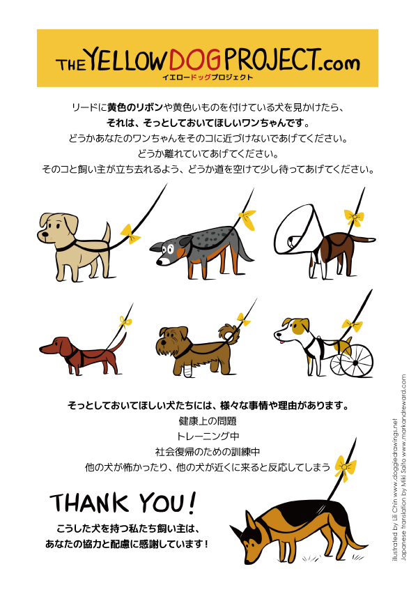 The Yellow Dog Project.