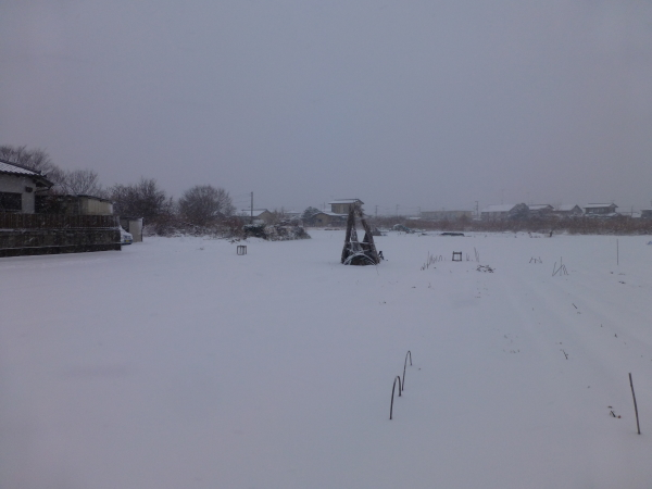 140207雪0002