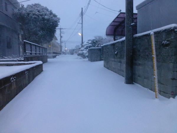 140207雪0005