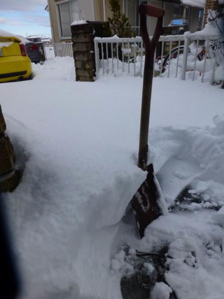 140209雪0001