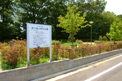 小川町公園