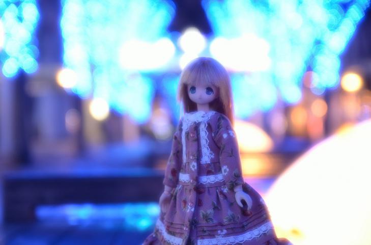 03DSC_2015.jpg
