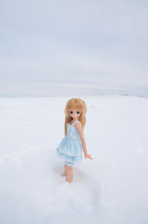 03DSC_4336.jpg