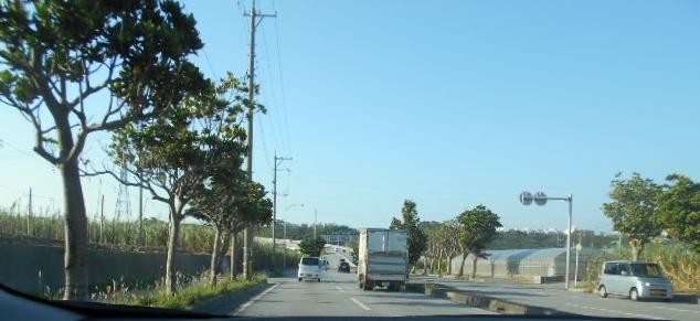 沖縄の朝③