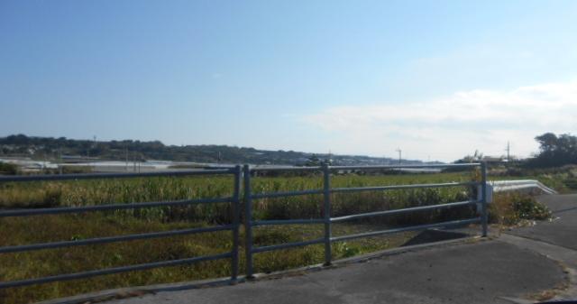 沖縄の朝4