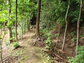 2010_0620_0841松ヶ丘