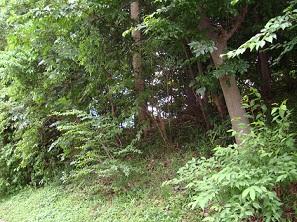2010_0620_0846松ヶ丘