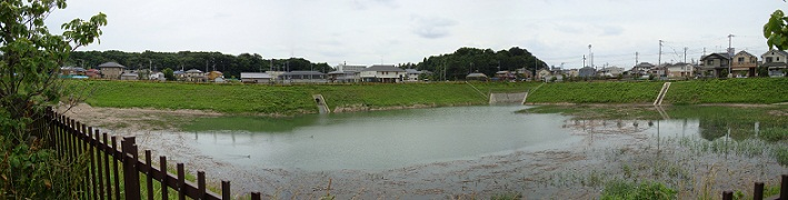 2011_0615_103709-DSC03396 西平井調整池