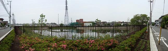 2011_0603_102246-DSC03113 みやぞの野鳥の池