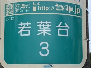2012_0301_101452-DSC06610.jpg
