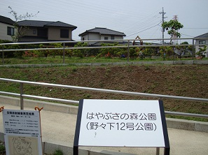 2012_0602_095259-DSC08351.jpg