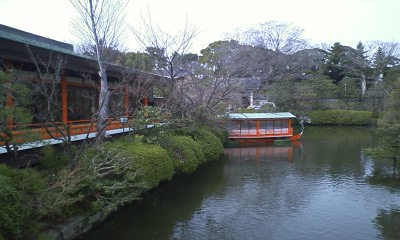 神泉苑の梅の花4