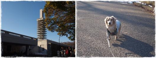 駒沢あ散歩5