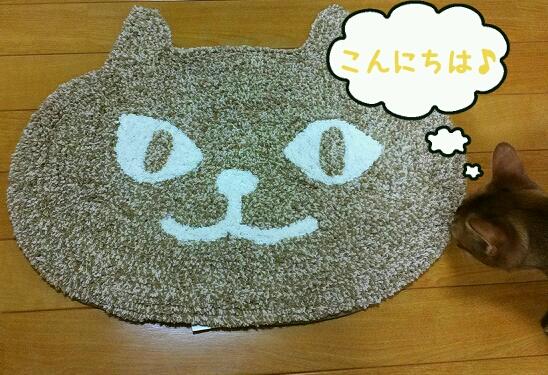 猫のマット