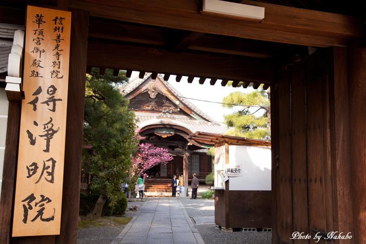 Higashiyama-Hanatouro_15.jpg
