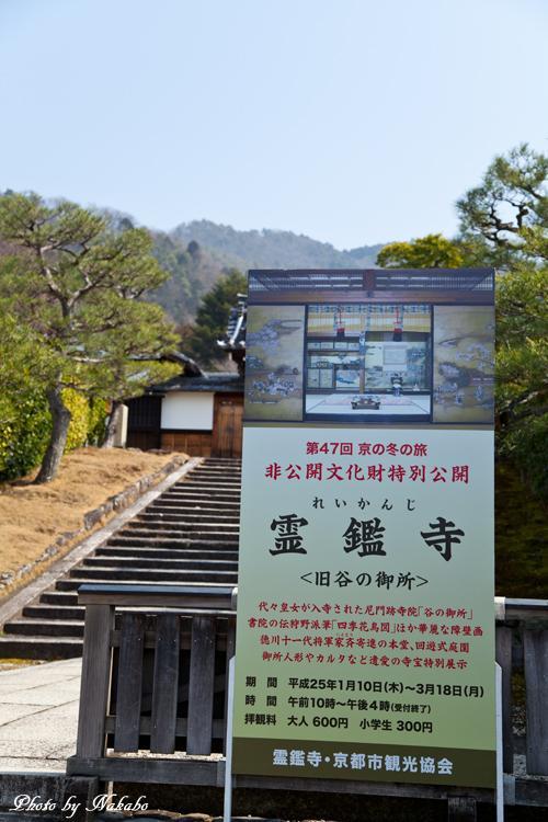 Higashiyama-Hanatouro_2.jpg