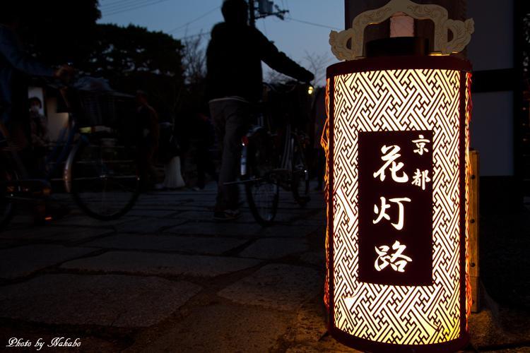 Higashiyama-Hanatouro_31.jpg
