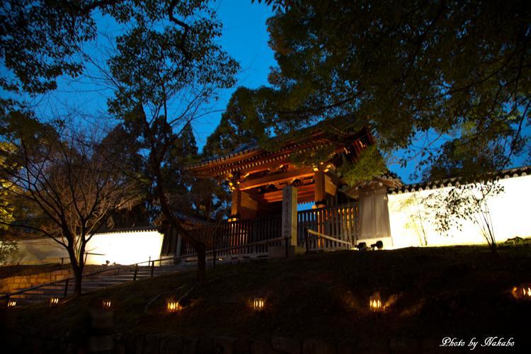Higashiyama-Hanatouro_34.jpg
