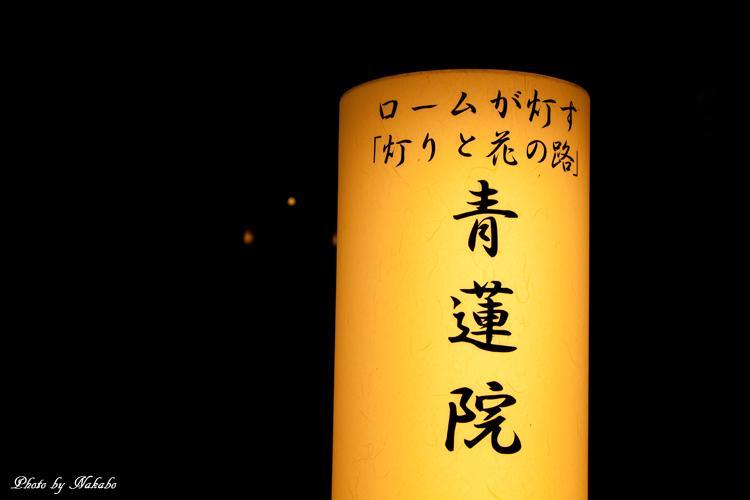 Higashiyama-Hanatouro_36.jpg