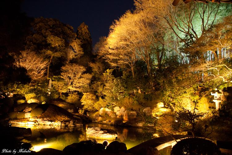 Higashiyama-Hanatouro_38.jpg