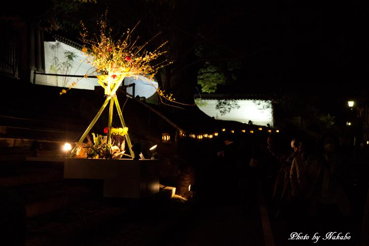Higashiyama-Hanatouro_43.jpg