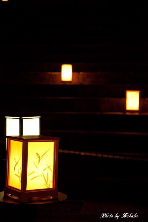 Higashiyama-Hanatouro_46.jpg