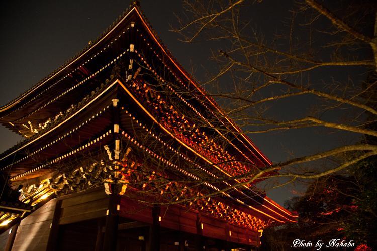 Higashiyama-Hanatouro_49.jpg