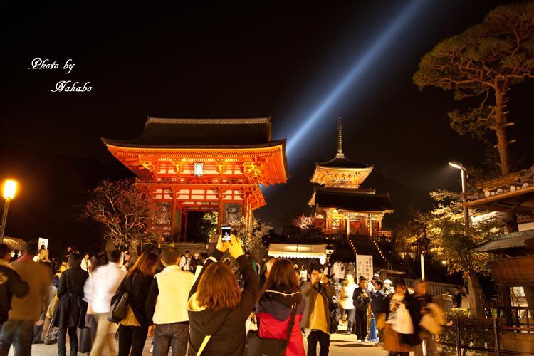 Higashiyama-Hanatouro_74.jpg