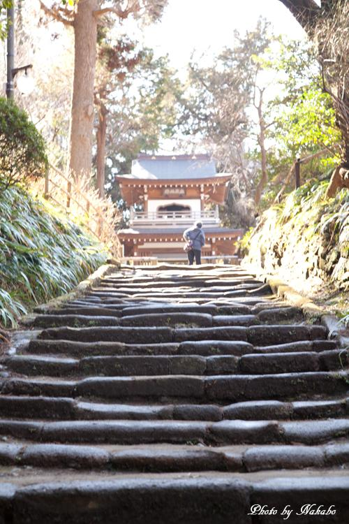 Kamakura-Enoshima_3.jpg