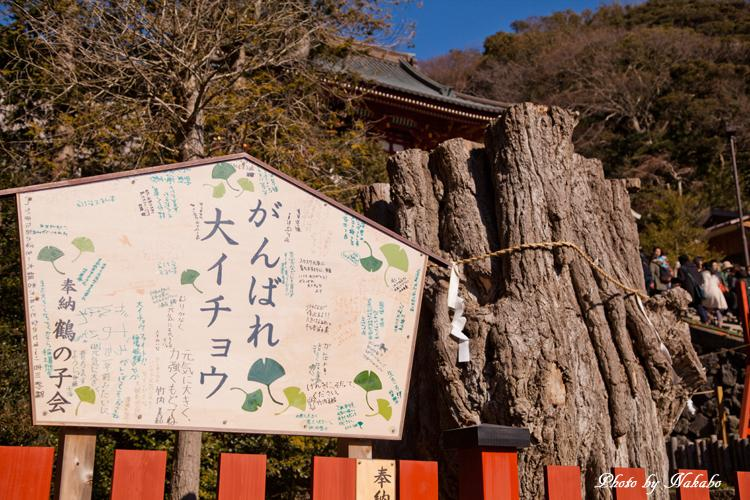 Kamakura-Enoshima_30.jpg