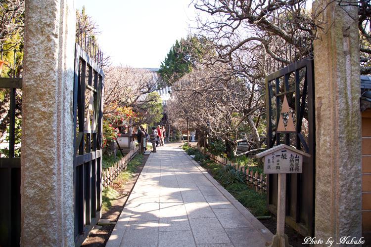 Kamakura-Enoshima_34.jpg