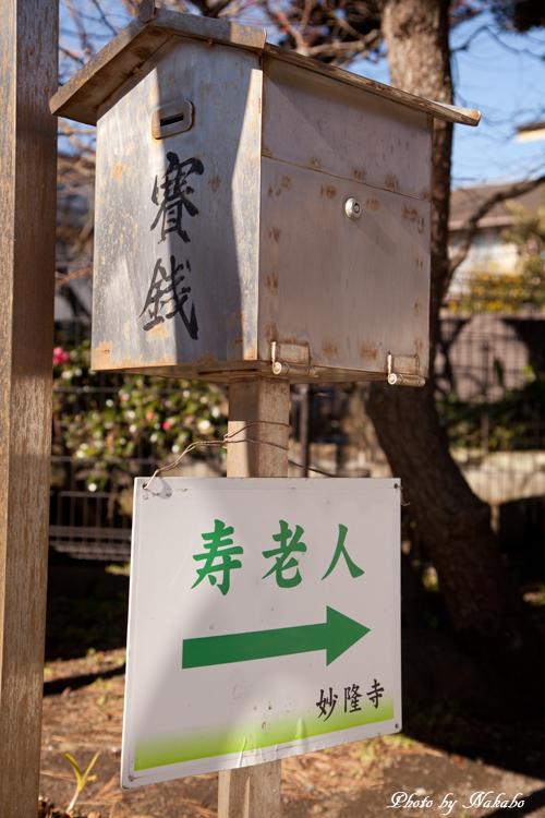 Kamakura-Enoshima_44.jpg